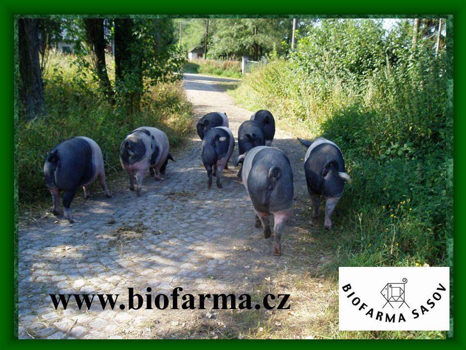 www.biofarma.cz