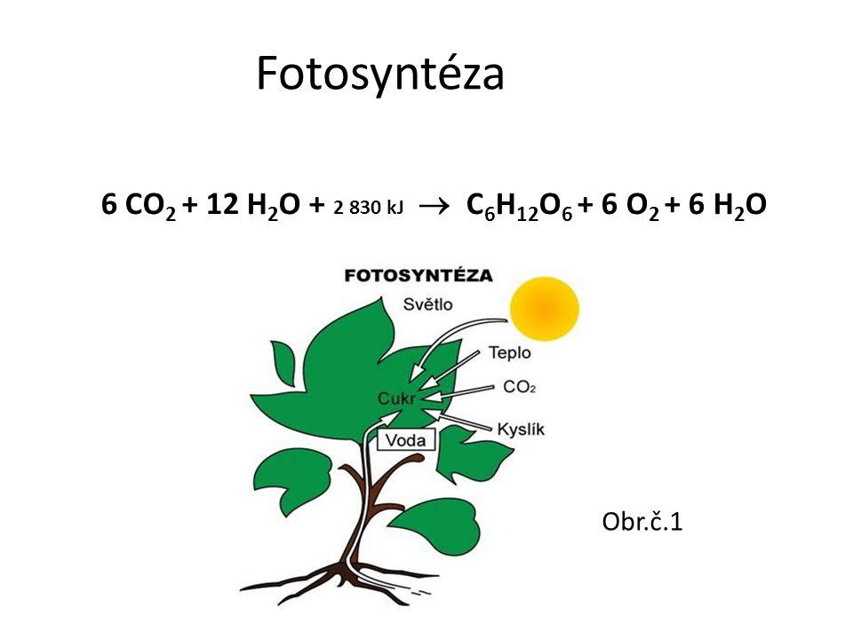 Fotosyntéza 6 CO 2 + 12 H 2 O + 2 830 kJ  C 6 H 12 O 6 + 6 O 2 + 6 H 2 O Obr.č.1
