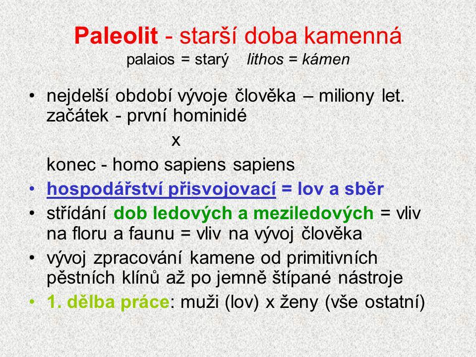 Paleolit - starší doba kamenná palaios = starý lithos = kámen nejdelší období vývoje člověka – miliony let. začátek - první hominidé x konec - homo sa