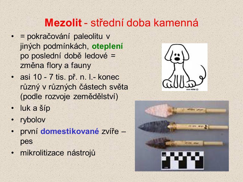 Mezolit - střední doba kamenná = pokračování paleolitu v jiných podmínkách, oteplení po poslední době ledové = změna flory a fauny asi 10 - 7 tis. př.