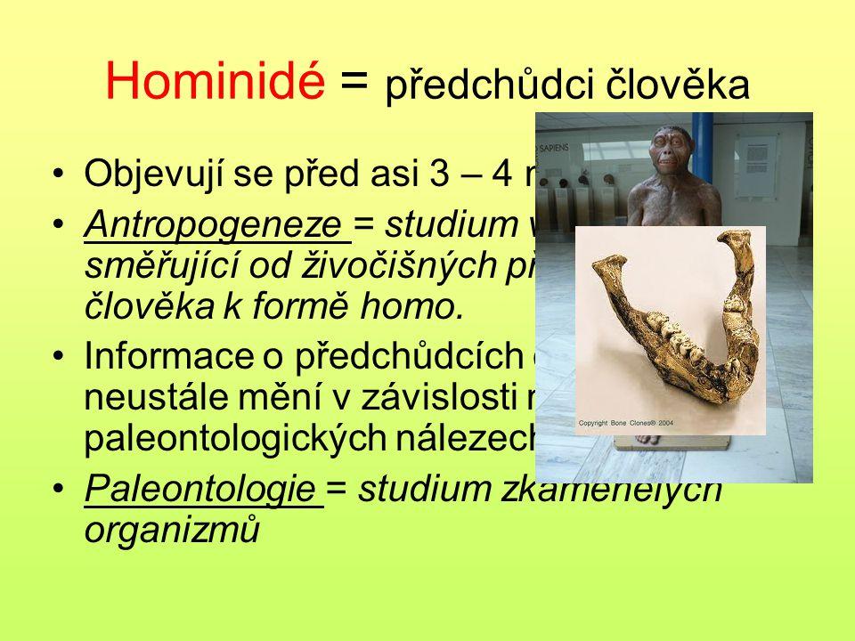 Hominidé = předchůdci člověka Objevují se před asi 3 – 4 miliony let Antropogeneze = studium vývojové linie směřující od živočišných předchůdců člověk