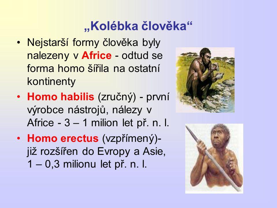 """""""Kolébka člověka"""" Nejstarší formy člověka byly nalezeny v Africe - odtud se forma homo šířila na ostatní kontinenty Homo habilis (zručný) - první výro"""