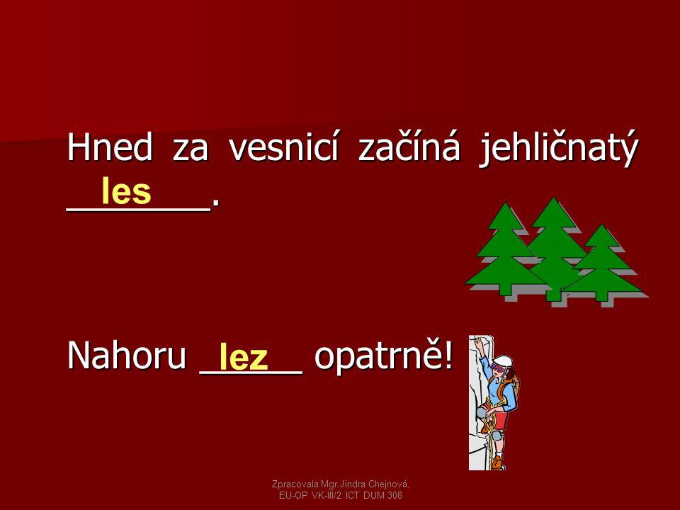 Hned za vesnicí začíná jehličnatý _______. Nahoru _____ opatrně! les lez Zpracovala Mgr.Jindra Chejnová, EU-OP VK-III/2 ICT DUM 308