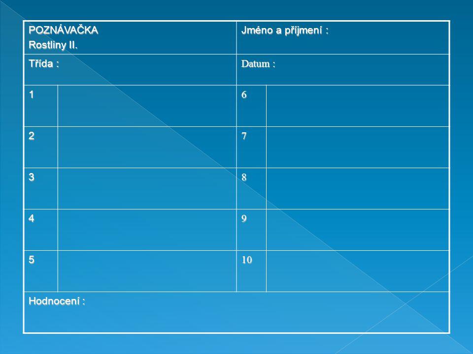 POZNÁVAČKA Rostliny II. Jméno a příjmení : Třída : Datum : 16 27 38 49 5 10101010 Hodnocení :