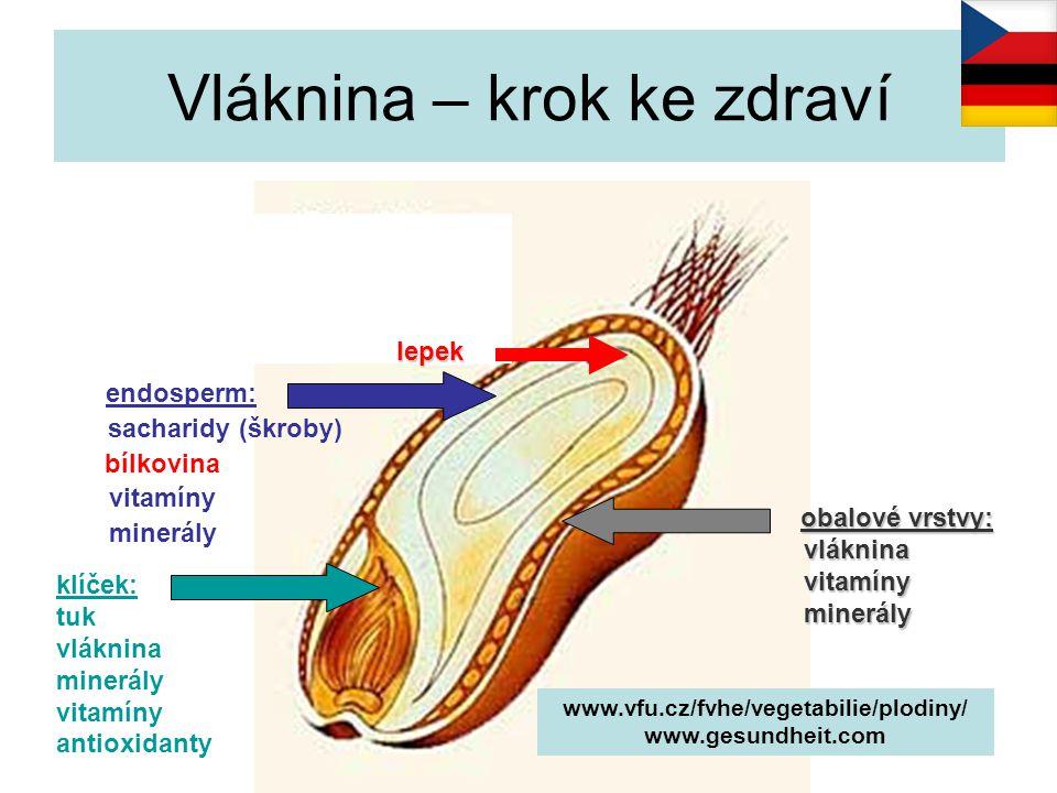 celozrnné mouky nerozpustná vláknina: ↑ objem stolice, ↑ střevní peristaltika ↓ expozice škodlivých látek preventivně: zácpa, dráždivý tračník, nádory střeva rozpustná vláknina: ↓ evakuace žaludku, ↑ sytost ↓ trávení, vstřebávání, enzymů, ↑ pasáž střevem ↓ hladiny cukru a inzulínu ~ bílé pečivo,LDL- cholesterol Vláknina – krok ke zdraví www.vfu.cz/fvhe/vegetabilie/plodiny/ Zamrazilová E.