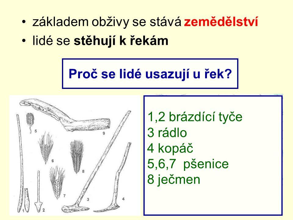 základem obživy se stává zemědělství lidé se stěhují k řekám Proč se lidé usazují u řek? 1,2 brázdící tyče 3 rádlo 4 kopáč 5,6,7 pšenice 8 ječmen