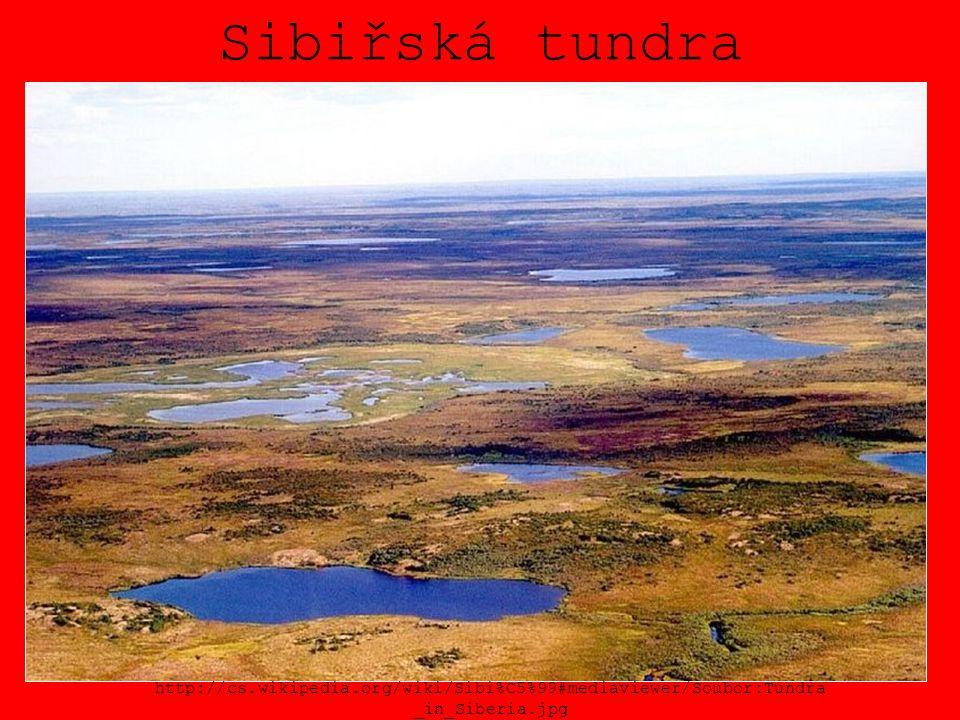 Sibiřská tundra http://cs.wikipedia.org/wiki/Sibi%C5%99#mediaviewer/Soubor:Tundra _in_Siberia.jpg