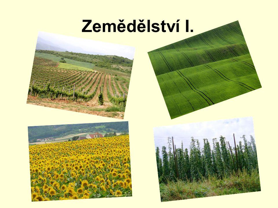 Zemědělství I.