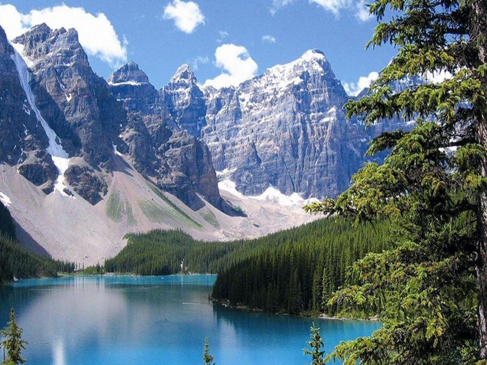 Východní část Kanady tvoří nížiny(Arktická) ale i vysočiny(Laurentinská).(Tajga, lesy listnaté, jehličnaté a smíšené, tundry, lesotundry). Východ Kana