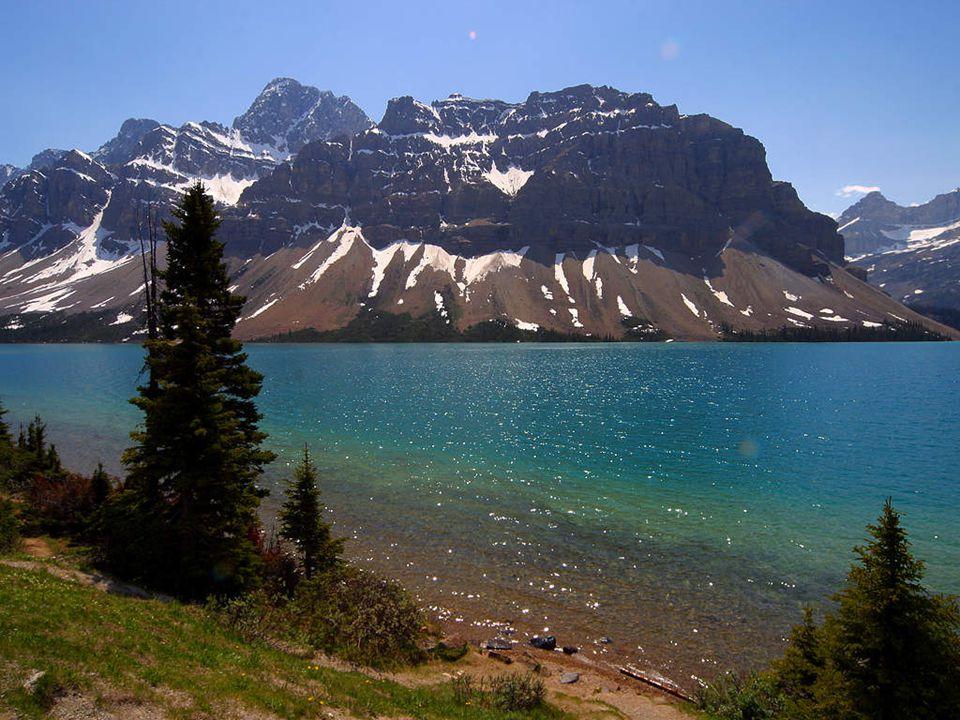 Mírný až polární pás. Pevninské oblasti: mírná suchá, subpolární, polární a vysokohorská oblast. V Kanadě nalezneme stříbro, uran, diamanty, černé uhl