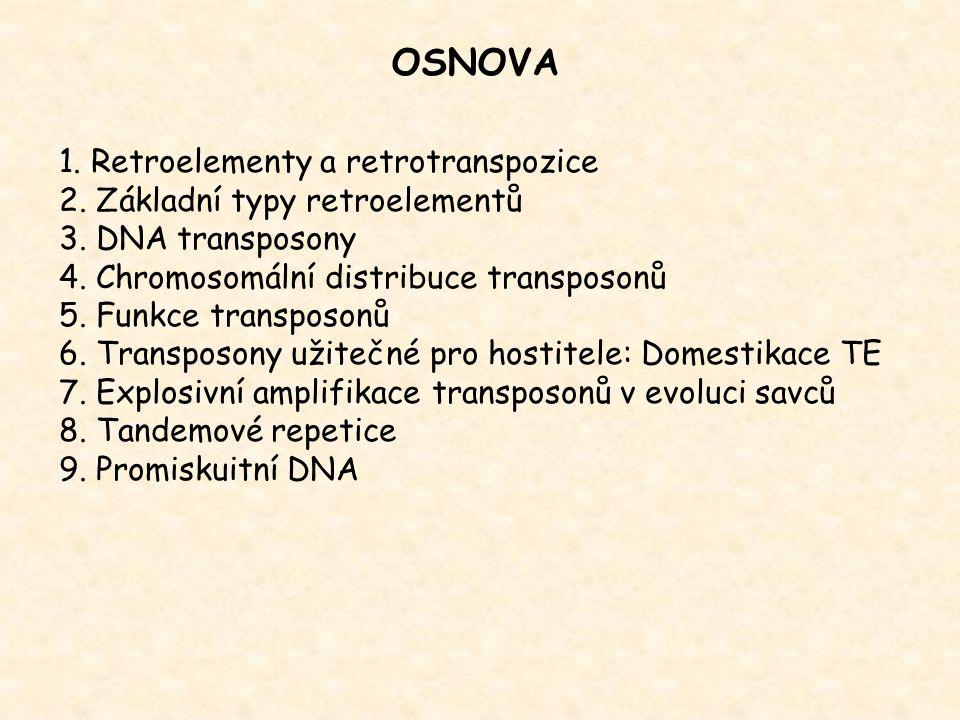 Podstatnou část genomů tvoří opakující se úseky DNA (repetice) lidský genom