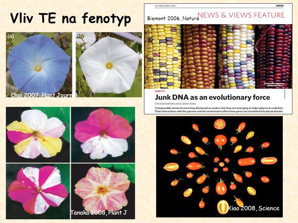 Vliv TE na fenotyp Biemont 2006, Nature Choi 2007, Plant Journal Tanaka 2008, Plant J Xiao 2008, Science