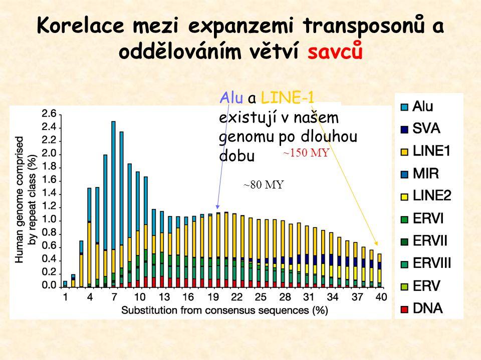 Korelace mezi expanzemi transposonů a oddělováním větví savců Alu a LINE-1 existují v našem genomu po dlouhou dobu ~80 MY ~150 MY