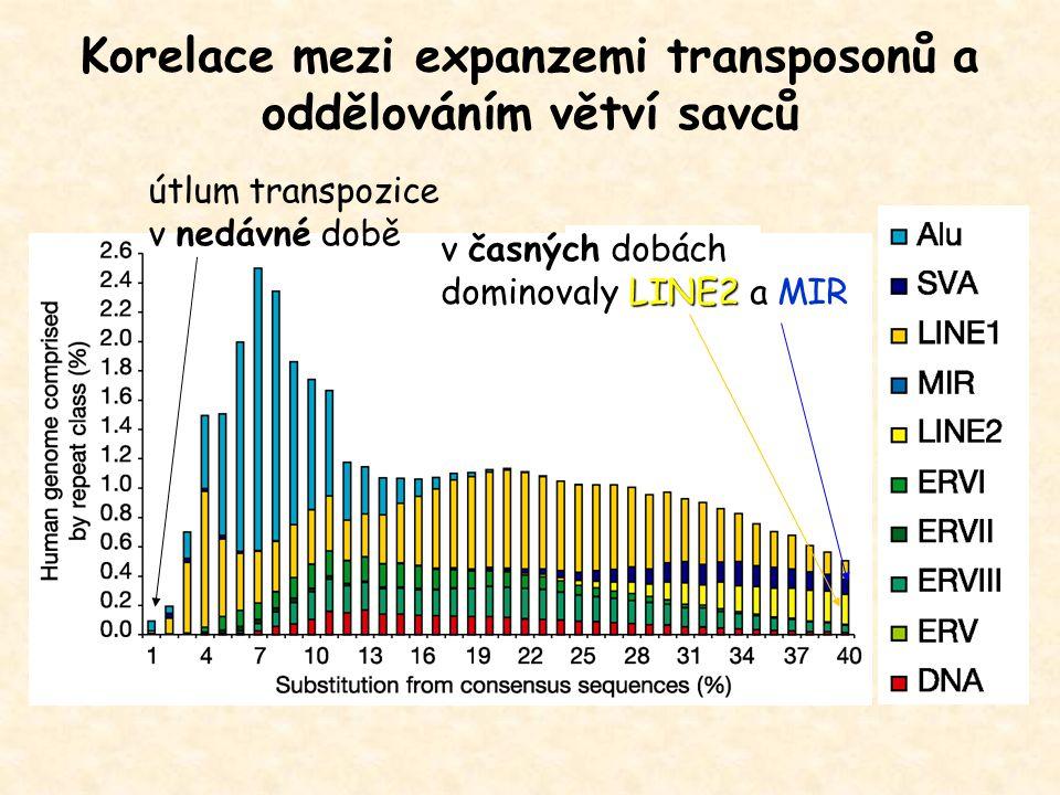 Korelace mezi expanzemi transposonů a oddělováním větví savců LINE2 v časných dobách dominovaly LINE2 a MIR útlum transpozice v nedávné době