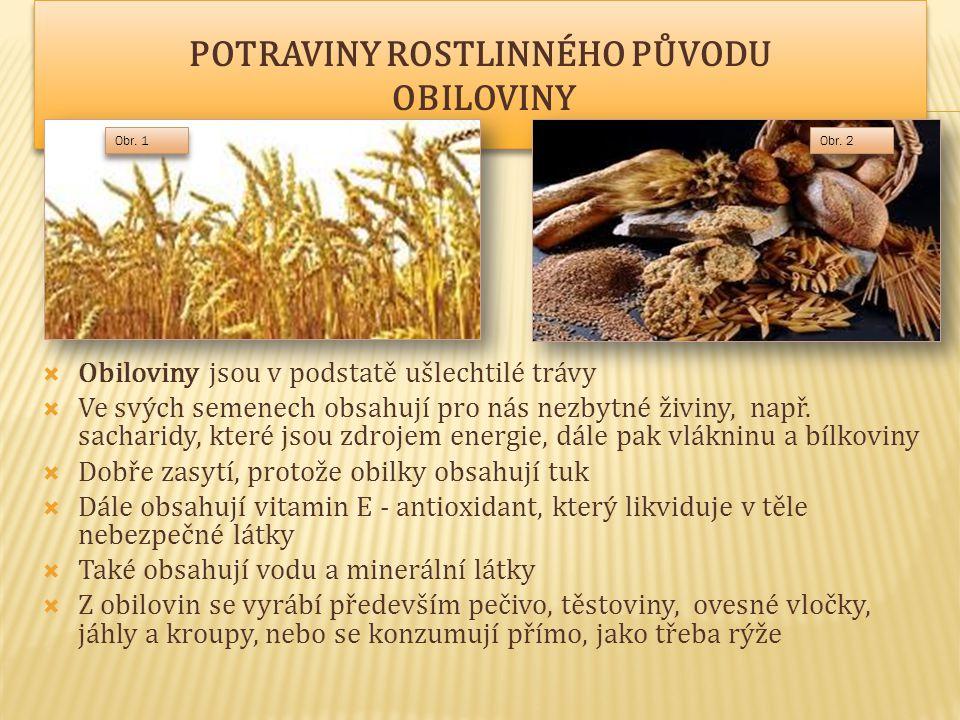  Obiloviny jsou v podstatě ušlechtilé trávy  Ve svých semenech obsahují pro nás nezbytné živiny, např.
