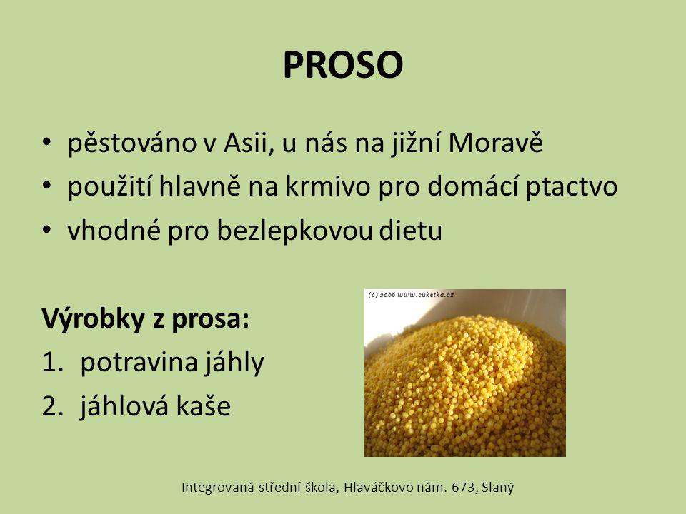 PROSO pěstováno v Asii, u nás na jižní Moravě použití hlavně na krmivo pro domácí ptactvo vhodné pro bezlepkovou dietu Výrobky z prosa: 1.potravina já