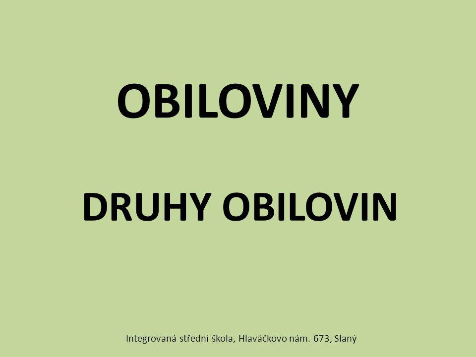 OBILOVINY DRUHY OBILOVIN Integrovaná střední škola, Hlaváčkovo nám. 673, Slaný