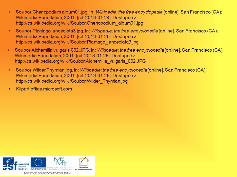 Soubor:Illustration Dactylis glomerata0.jpg. In: Wikipedia: the free encyclopedia [online]. San Francisco (CA): Wikimedia Foundation, 2001- [cit. 2013