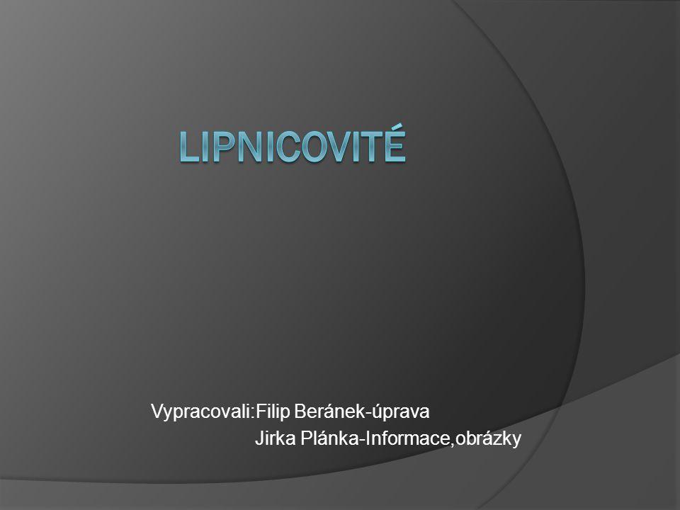 Vypracovali:Filip Beránek-úprava Jirka Plánka-Informace,obrázky