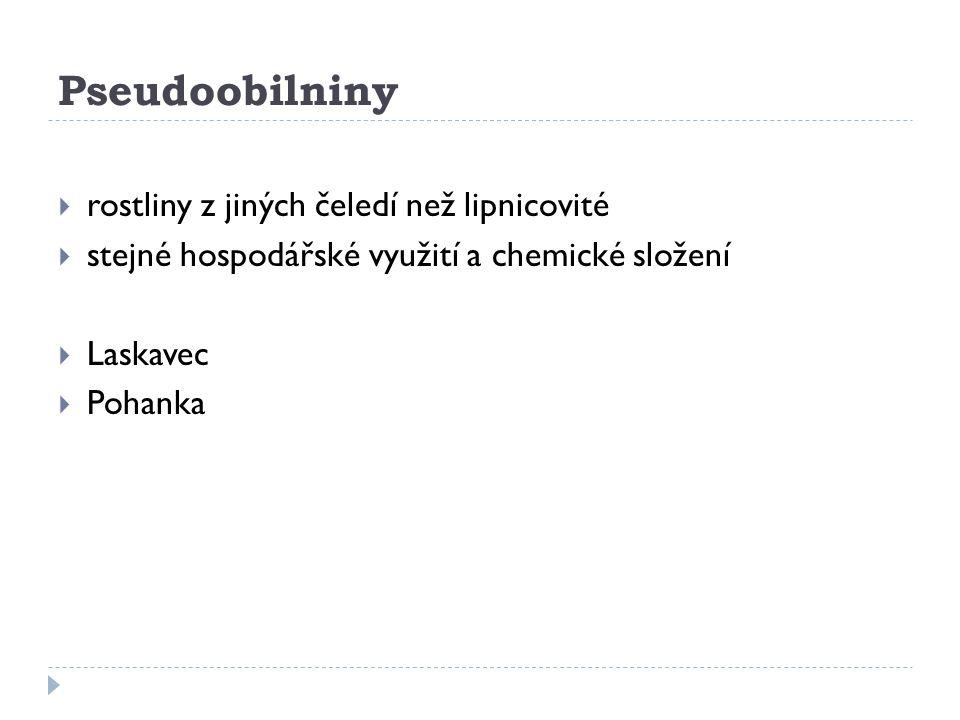 Bilance semelku čs.mlýnů Olga Kopáčová.