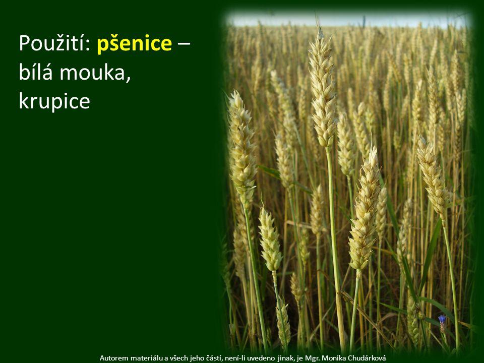 Autorem materiálu a všech jeho částí, není-li uvedeno jinak, je Mgr. Monika Chudárková Použití: pšenice – bílá mouka, krupice