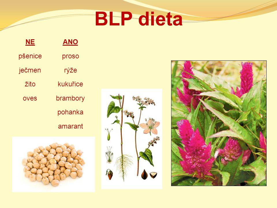 BLP dieta NEANO pšeniceproso ječmenrýže žitokukuřice ovesbrambory pohanka amarant