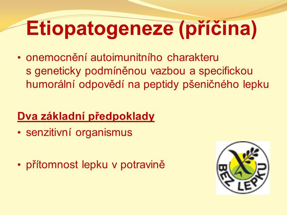 Etiopatogeneze (příčina) onemocnění autoimunitního charakteru s geneticky podmíněnou vazbou a specifickou humorální odpovědí na peptidy pšeničného lep