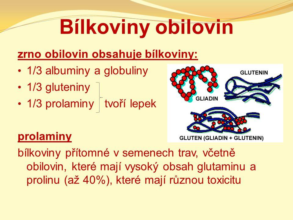 Bílkoviny obilovin zrno obilovin obsahuje bílkoviny: 1/3 albuminy a globuliny 1/3 gluteniny 1/3 prolaminy tvoří lepek prolaminy bílkoviny přítomné v s
