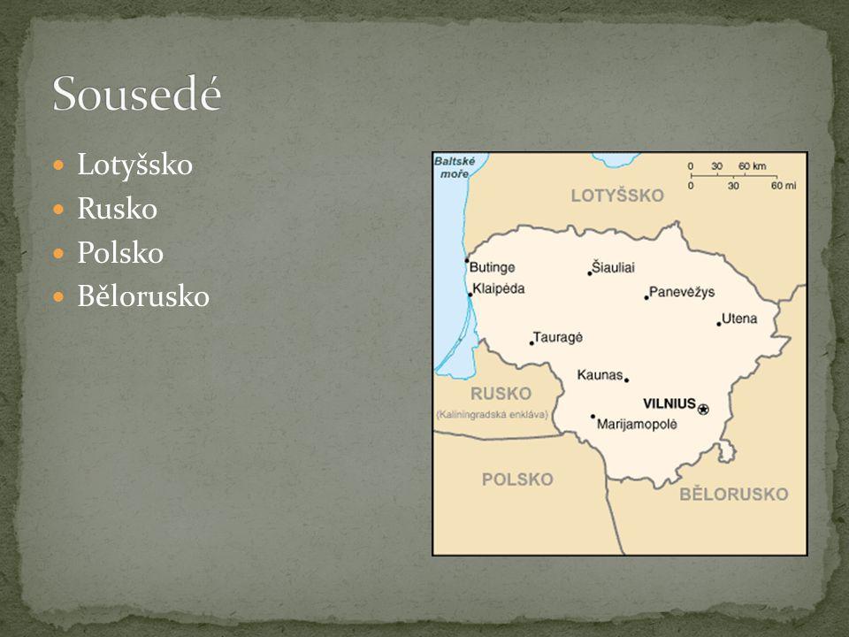 Litva má 90 km písečného mořského pobřeží. Nejvýznamnější litevskou řekou je Němen.
