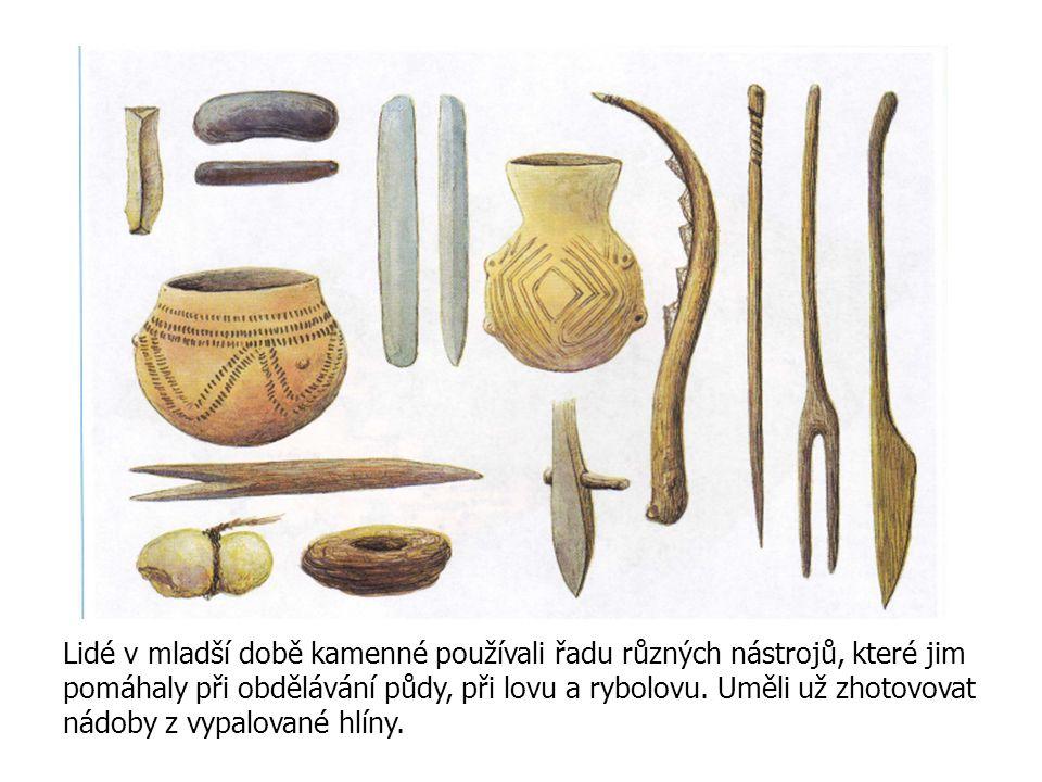 Lidé v mladší době kamenné používali řadu různých nástrojů, které jim pomáhaly při obdělávání půdy, při lovu a rybolovu.
