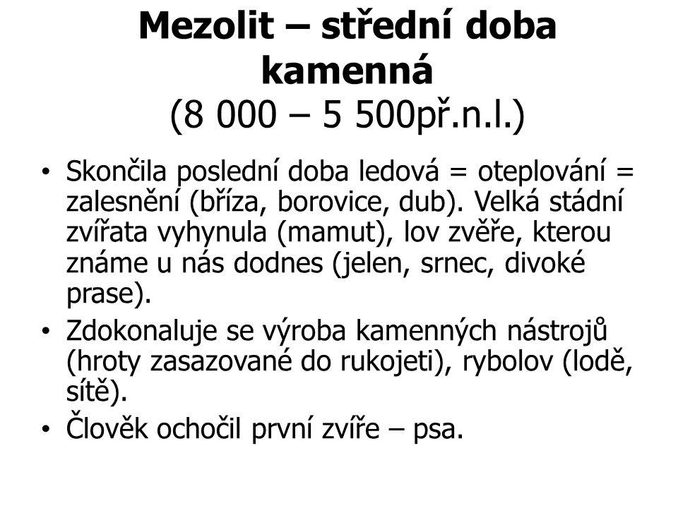Mezolit – střední doba kamenná (8 000 – 5 500př.n.l.) Skončila poslední doba ledová = oteplování = zalesnění (bříza, borovice, dub).