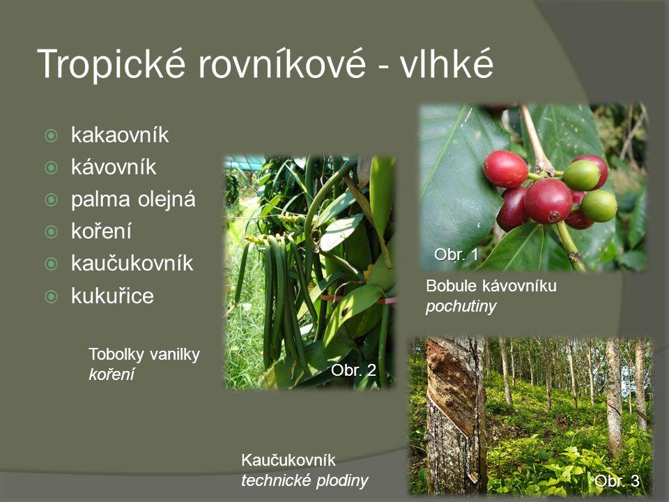 Tropické rovníkové - vlhké  kakaovník  kávovník  palma olejná  koření  kaučukovník  kukuřice Obr.