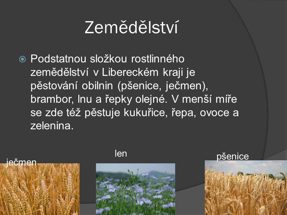 Zemědělství  Podstatnou složkou rostlinného zemědělství v Libereckém kraji je pěstování obilnin (pšenice, ječmen), brambor, lnu a řepky olejné.