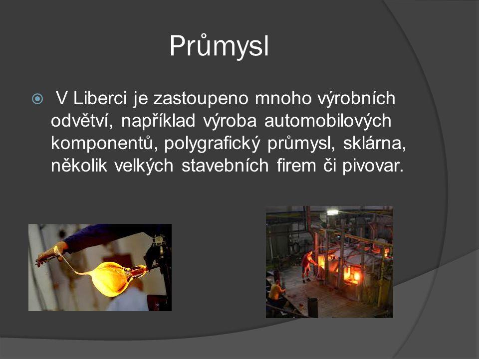 Průmysl  V Liberci je zastoupeno mnoho výrobních odvětví, například výroba automobilových komponentů, polygrafický průmysl, sklárna, několik velkých stavebních firem či pivovar.