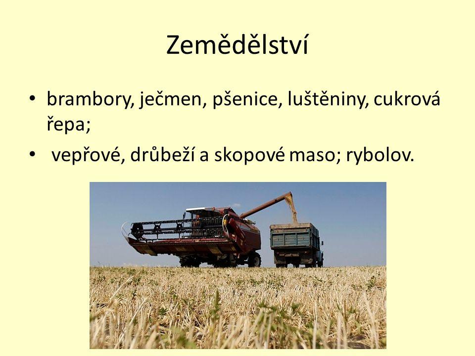 Zemědělství brambory, ječmen, pšenice, luštěniny, cukrová řepa; vepřové, drůbeží a skopové maso; rybolov.