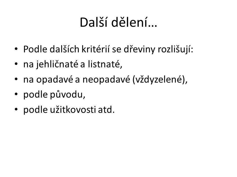 Dendrologie je nauka o dřevinách, tedy o stromech a keřích (z řeckého dendron –strom, logos – slovo, nauka).