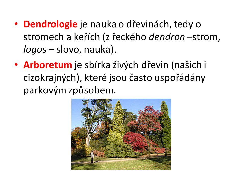 Dendrologie je nauka o dřevinách, tedy o stromech a keřích (z řeckého dendron –strom, logos – slovo, nauka). Arboretum je sbírka živých dřevin (našich