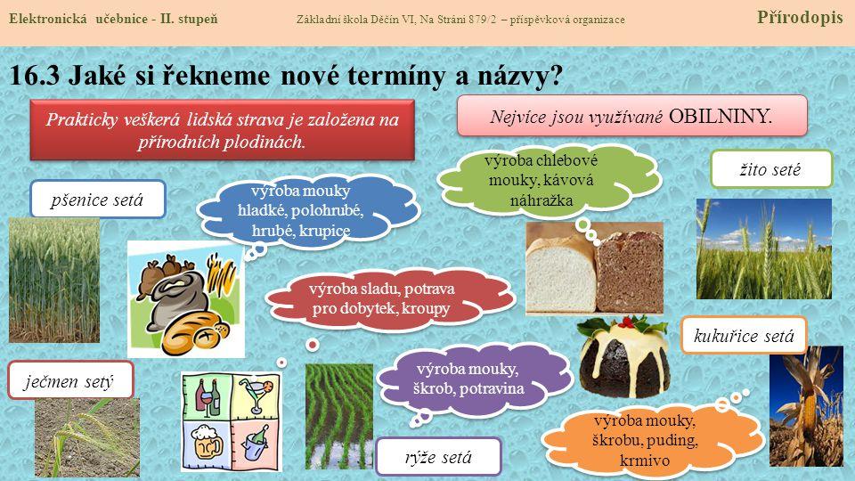 16.3 Jaké si řekneme nové termíny a názvy.Elektronická učebnice - II.