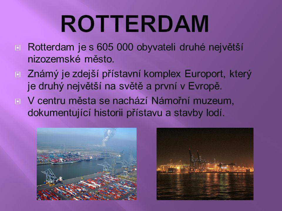  Rotterdam  Utrech  Breda  Arnhem  Den Haag