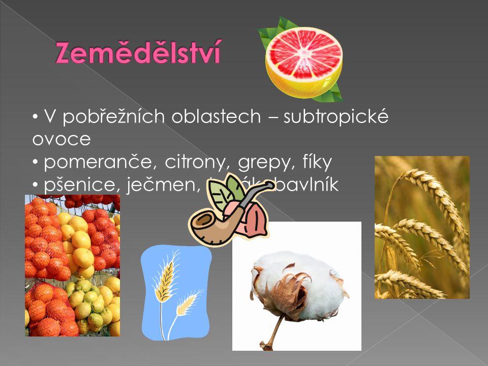 V pobřežních oblastech – subtropické ovoce pomeranče, citrony, grepy, fíky pšenice, ječmen, tabák, bavlník