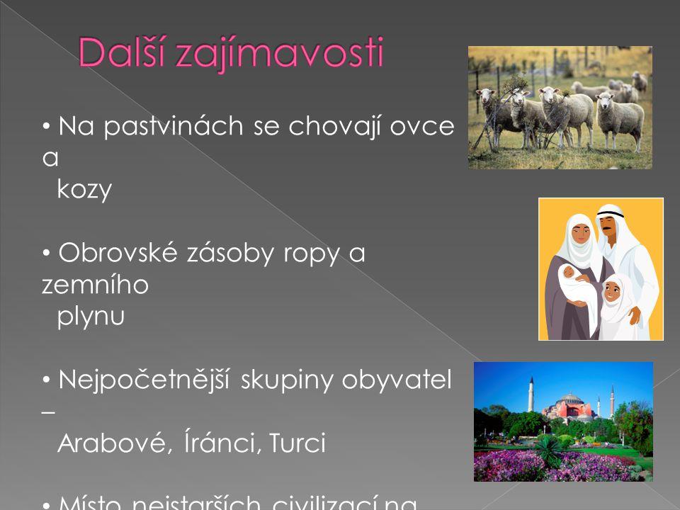 Na pastvinách se chovají ovce a kozy Obrovské zásoby ropy a zemního plynu Nejpočetnější skupiny obyvatel – Arabové, Íránci, Turci Místo nejstarších ci