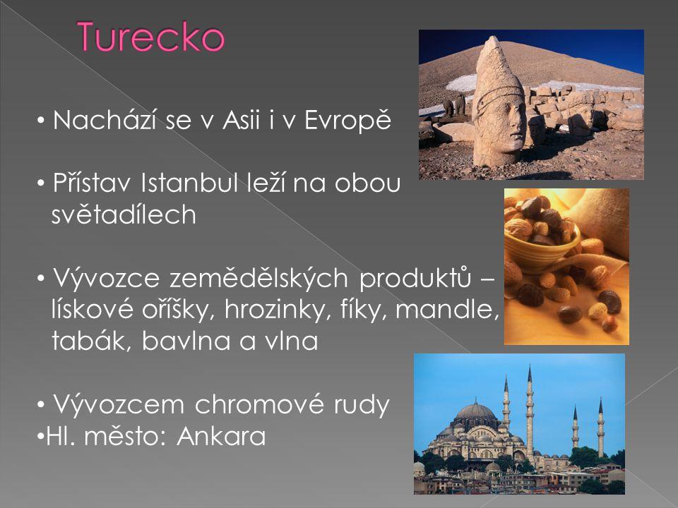 Nachází se v Asii i v Evropě Přístav Istanbul leží na obou světadílech Vývozce zemědělských produktů – lískové oříšky, hrozinky, fíky, mandle, tabák,