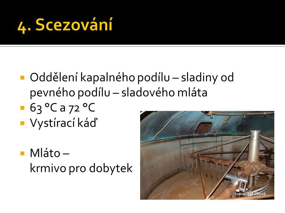  Oddělení kapalného podílu – sladiny od pevného podílu – sladového mláta  63 °C a 72 °C  Vystírací káď  Mláto – krmivo pro dobytek Ivana Blažíčkov
