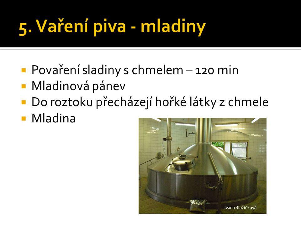  Povaření sladiny s chmelem – 120 min  Mladinová pánev  Do roztoku přecházejí hořké látky z chmele  Mladina Ivana Blažíčková