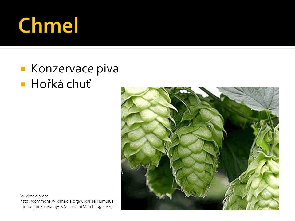  Konzervace piva  Hořká chuť Wikimedia.org. http://commons.wikimedia.org/wiki/File:Humulus_l upulus.jpg?uselang=cs (accessed March 09, 2011).