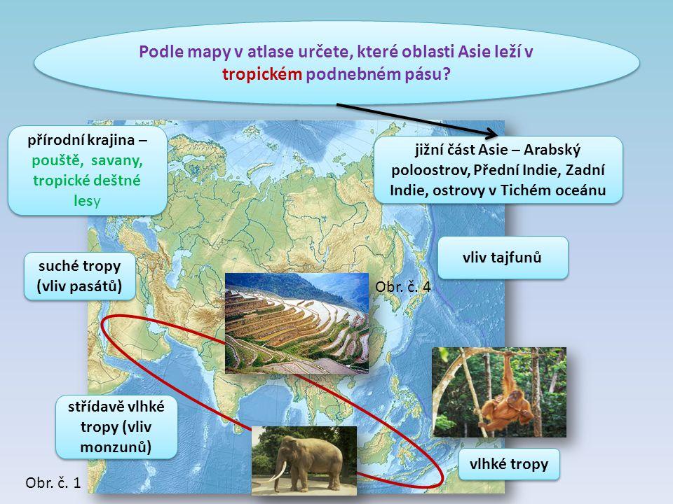 Podle mapy v atlase určete, které oblasti Asie leží v tropickém podnebném pásu? suché tropy (vliv pasátů) suché tropy (vliv pasátů) jižní část Asie –