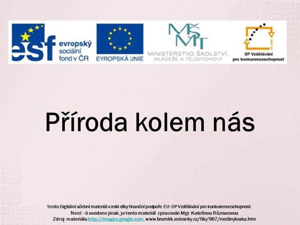 Tento Digitální učební materiál vznikl díky finanční podpoře EU- OP Vzdělávání pro konkurenceschopnost. Příroda kolem nás Není –li uvedeno jinak, je t