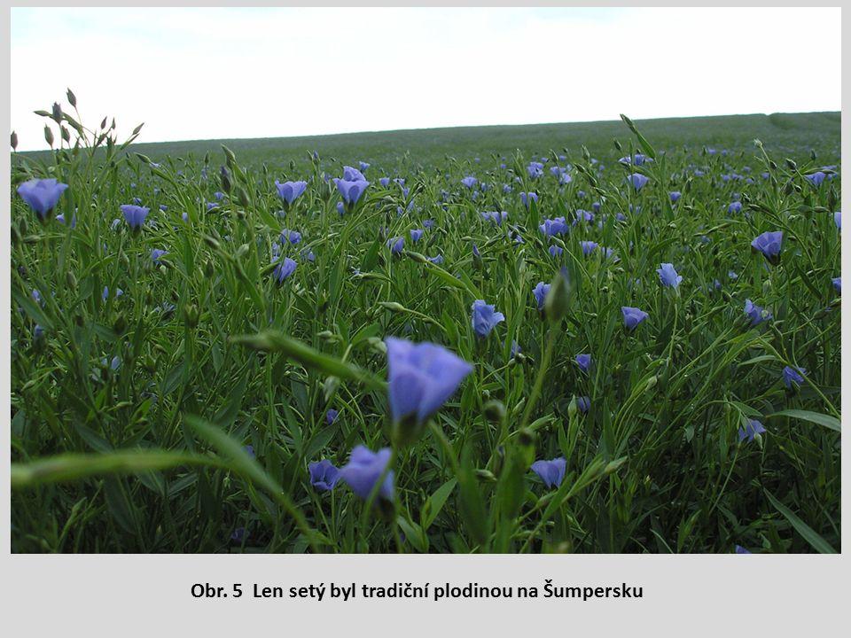 Obr. 5 Len setý byl tradiční plodinou na Šumpersku