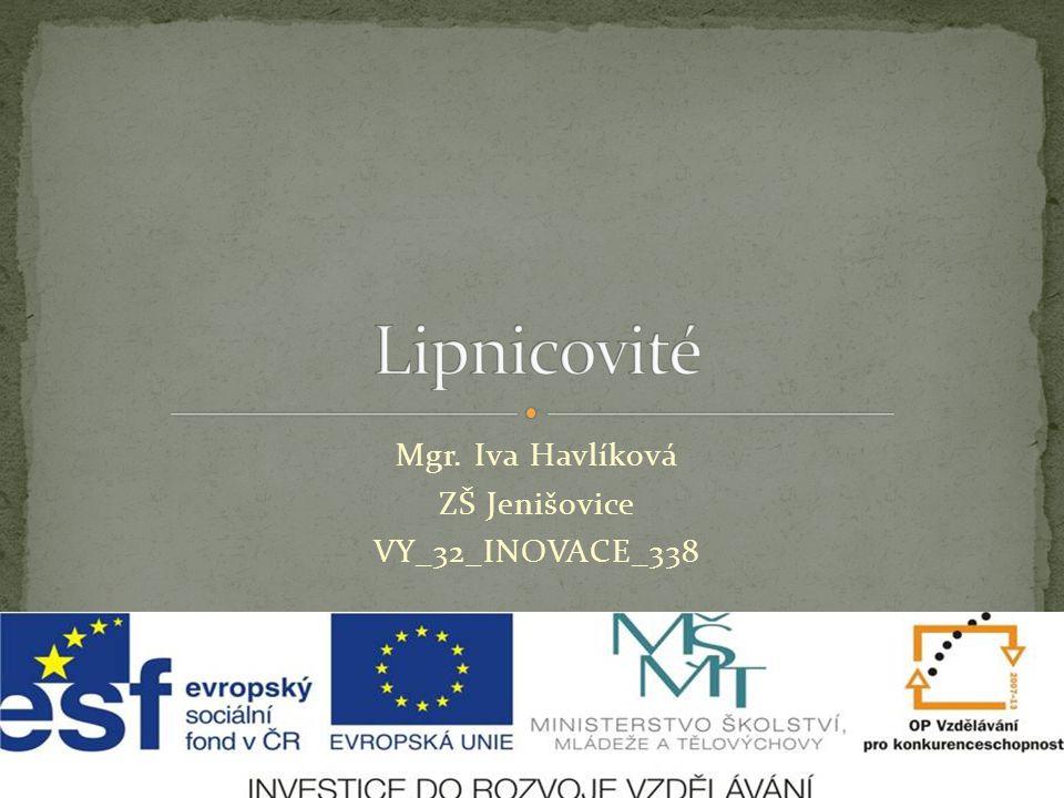 Mgr. Iva Havlíková ZŠ Jenišovice VY_32_INOVACE_338