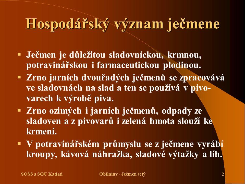 SOŠS a SOU KadaňObilniny - Ječmen setý2 Hospodářský význam ječmene  Ječmen je důležitou sladovnickou, krmnou, potravinářskou i farmaceutickou plodinou.